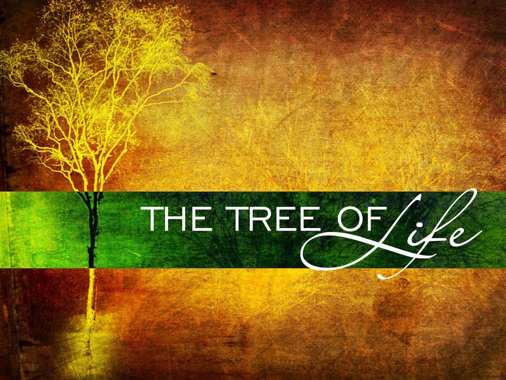 Eat from the Tree of Life!   Trinity Presbyterian Church